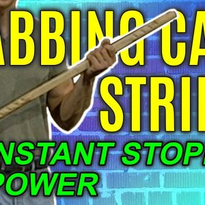 Walking Cane Strikes to Stop Attacker | Self Defense Moves | FightFast